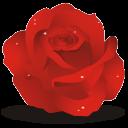 rose-icon