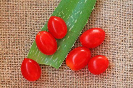 cách triệt lông mặt bằng cà chua3